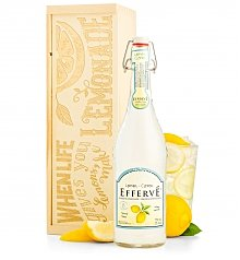 Food Drink Kits Gifts: When Life Gives You Lemons